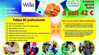 willis_nursind_2014